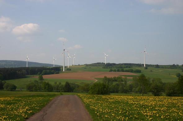 Bild: GEO-NET Umweltconsulting GmbH