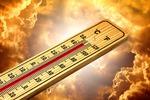 Das Klimaschutz-Sofortprogramm für die ersten 100 Tage