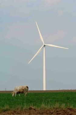 Canadian Wind Energy Association (CanWEA)