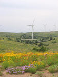 USA- Vestas secures service contract renewal for two Oklahoma wind power plants