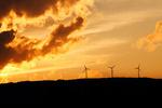 "New Zealand - Update on wind energy ""down-under"""