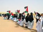 This week: Molins de Vent TARRAGÓ: Water for the Sahrawi civilians