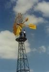 Molins de Vent TARRAGÓ: Windmills to improve biodiversity in Sweden